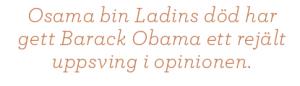 Ann-Sofie Dahl USA eller kaos Barack Obama Neo nr 5 2011 citat3