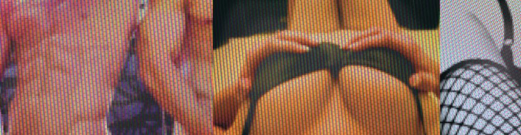 """Krus, Kompetensrådet för utveckling i staten,  har i uppdrag att analysera """"vilka kunskapsbehov som finns i statsförvaltningen avseende etiska riktlinjer för att förhindra sexköp, besök på porrklubb, porrsurfning och dylikt""""."""