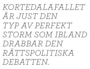 Brott och straff och politik Andreas Ericson Neo nr 2 2013 Johan Linander Caroline Szyber Johan Pehrson Anti Avsan citat