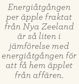 Patrik Strömer recensioner Neo nr 2 2013 Food junkie Locavore's dilemma hipstermat citat