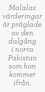Hanna Lager recension Malala Yousafzai & Christina  Lamb Jag är Malala Neo nr 1 2014 citat