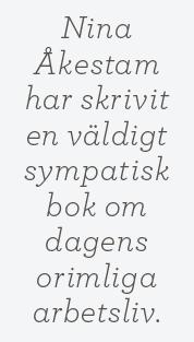Linda Skugge recension Nina Åkestam Meningen med hela skiten Neo nr 3 2014