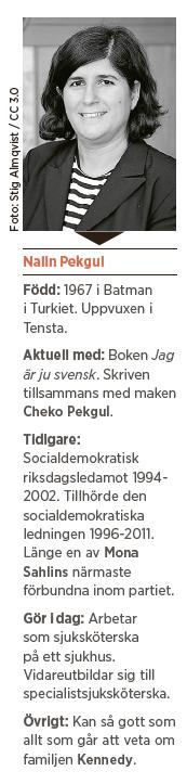 Dejta svenska killar