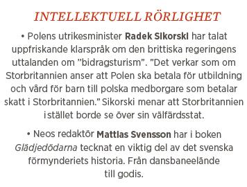 Fredrik Johansson krönika Sällskapsresan Stig Helmer Neo nr 1 2014 Mattias Svensson Glädjedödarna