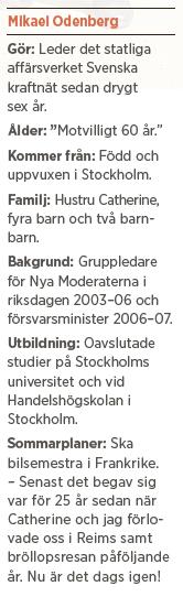 Mikael Odenberg Neo nr 3 2014 Bagdad Bob Anders Borg Fredrik Reinfeldt försvar värnplikt Nato budget bakgrund