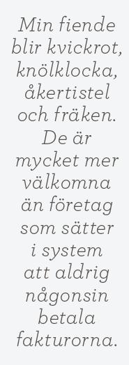 Linda Skugge recension  Bella Linde, Lena Granefelt  Rätt ur jorden Neo nr 5 2014 citat