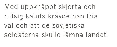Erik Zsiga Viktor Orbán Ungern Fidesz Jobbik libertarian Östeuropa Neo nr 1 2015 citat